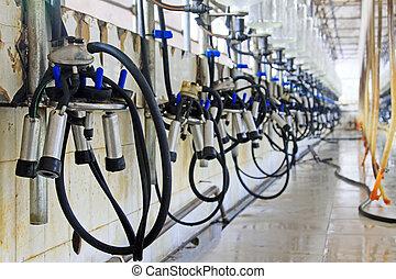 Mechanized milking equipment milking workshop - Mechanized...