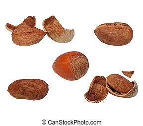 set hazelnuts isolated on white