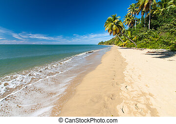 Anasco Beach, Puerto Rico - A?asco Beach, on the west coast...