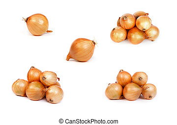 set of onions, isolated on white - set of onions, isolated...