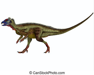 Hypsilophodon on White - Hypsilophodon is an ornithopod...