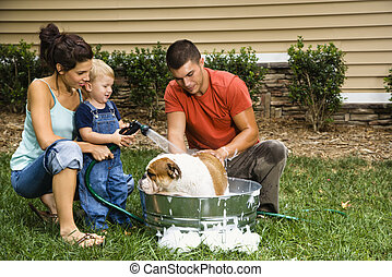Family giving dog a bath. - Caucasian family with toddler...