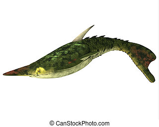 Pteraspis Fish on White - Pteraspis is an extinct genus of...