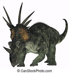 Styracosaurus on White - Styracosaurus was a herbivorous...