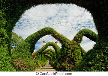 Amazing Gardens - Amazing forms on a Garden in Costa Rica