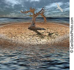 feito, relógio, ilha, árvore, Morto, inundação, capim,...