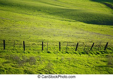 Hillside and barbed fence