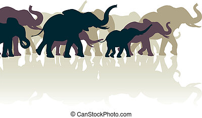 Elephant herd - Editable vector illustration of an elephant...