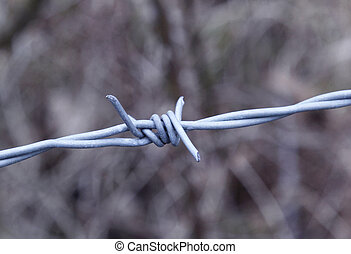 Barbed Wire - Barbed wire - oppression, injustice,