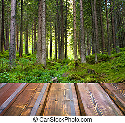 Beautiful sunlight in the autumn forest and wood planks...