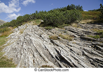 Mountain rock with green trees and blue sky and clouds