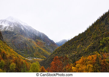 Mountain with snow and autumn trees