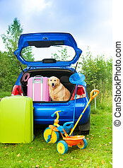 Dog, bags, toys, car ready for trip - Packing the car, dog...