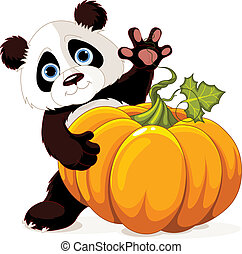 Harvest Panda - Cute little panda holding giant pumpkin