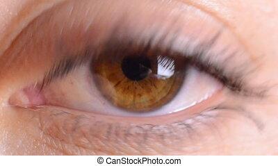eye macro...zoom in