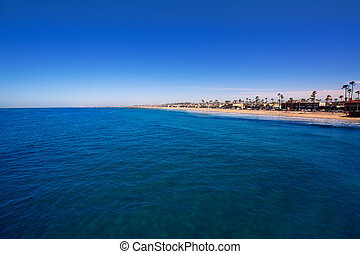 Newport beach in California with palm trees along the shore