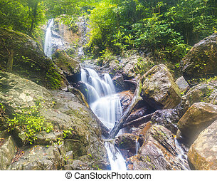 Deep forest waterfall at Kenyir lake, Malaysia