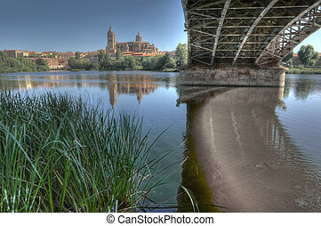 Under the Bridge of Sanchez Fabres in Salamanca - Bridge of...