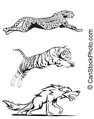cheetah, tiger and wolf