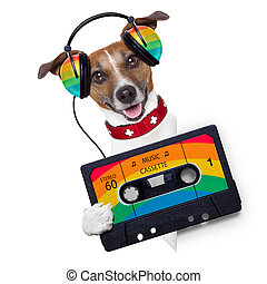 music dog - dog listening to music from an old cassette of...