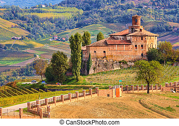 Old castle and vineyards in Piedmont, Italy. - View of...