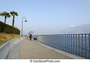 Woman with her dogs on the lakefront - Woman with an...