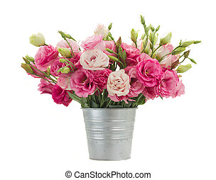 Pink eustoma flowers in metal pot isolated on white...