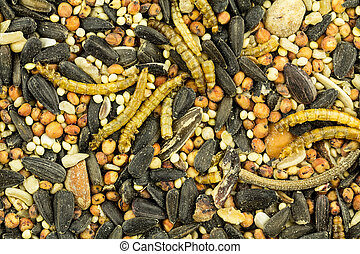 Bird seed background - Close up of birdseed background -...