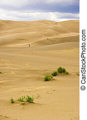 People walking in sand dunes