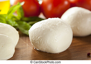 Homemade Organic Mozzarella Cheese with Tomato and Basil