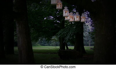 Party lights in the park - Lanterns are hanging on the tree...