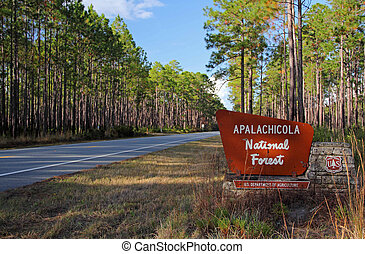 Apalachicola National Forest - Entrance to the Apalachicola...