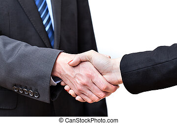 Business handshake in male and female execution