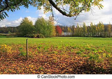 Autumn Along a River Pasture