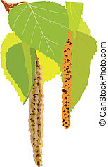 vector image of a green tree leaves