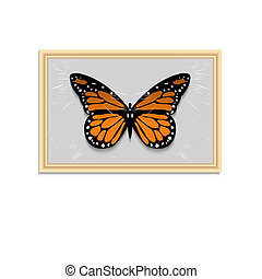 Vector Butterfly in wooden frame