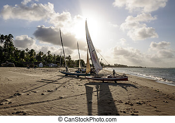 Pititinga (RN Brazil) Fisher boats on the beach - Beach of...