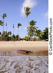 Pititinga RN Brazil raft on the beach - Pititinga beach,...