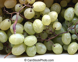 Fruit - Grape of vitis