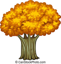 A big old tree - Illustration of a big old tree on a white...