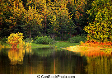 autumn bulgarian lake - autumn colorful lake in bulgarian...