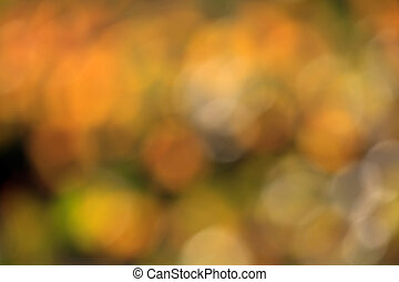 fall bokeh background - colorful autumn bokeh background...