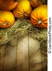 art thanksgiving pumpkins autumn background