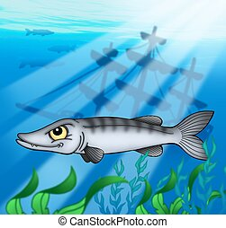 Barracuda with shipwreck - color illustration.