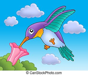 Humming bird with pink flower - color illustration.