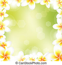 Frangipani Frame, With Gradient Mesh, Vector Illustration