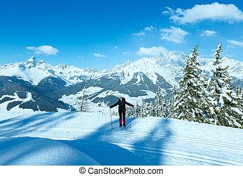Winter mountain fir forest landscape - Winter mountain fir...