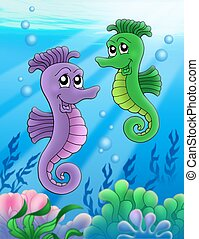 Pair of sea horses - color illustration