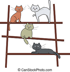 cats on ladder - Image of a cats on ladder