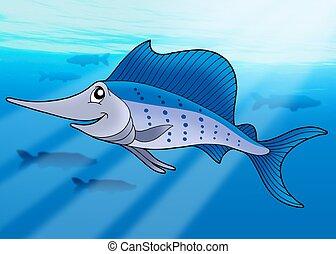 sailfish, mar